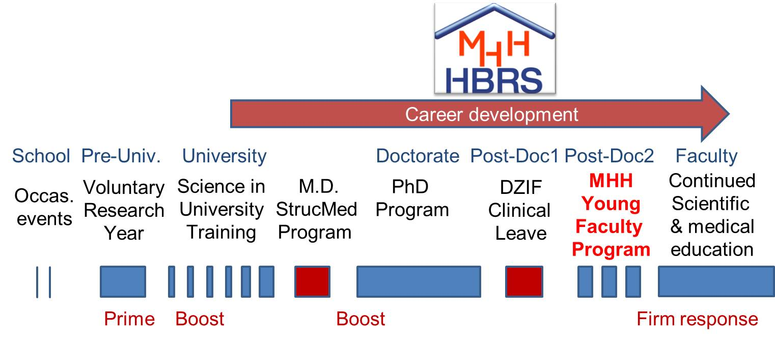 picture of career paths a MHH